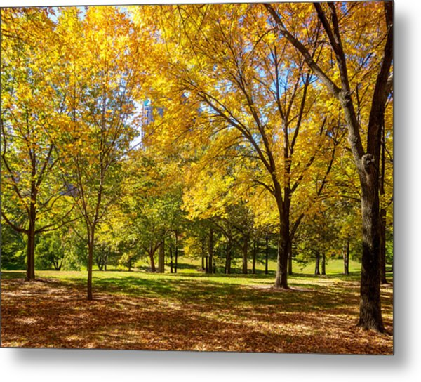 Metal Print featuring the photograph Fabulous Fall Foliage by David Coblitz