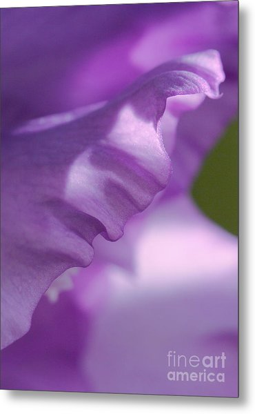 Face In A Glad  Metal Print
