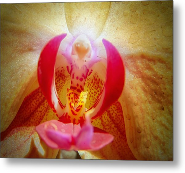 Face In The Orchid Metal Print