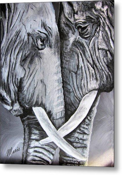 Face To Face Metal Print by Maris Sherwood