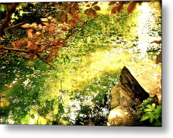 Metal Print featuring the photograph Fairies by HweeYen Ong