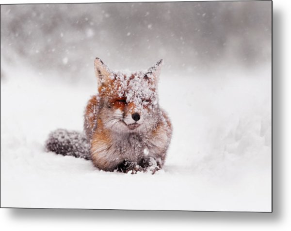 Fairytale Fox II Metal Print