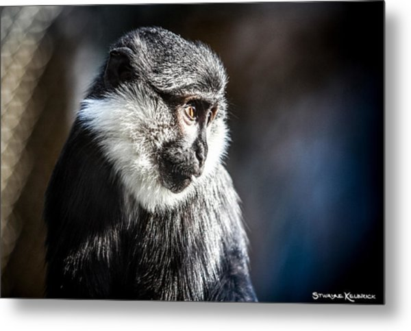 Fake Wildlife Metal Print