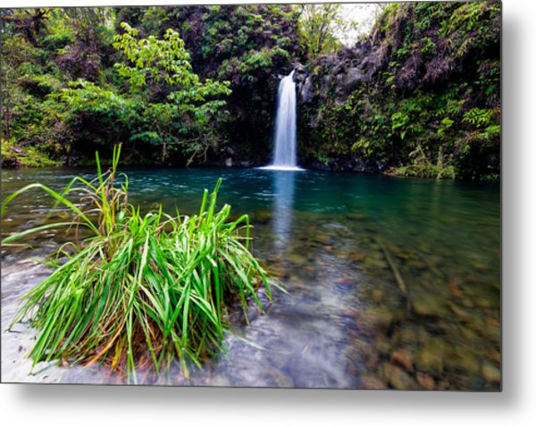 Metal Print featuring the photograph Fall And Pool by David Buhler