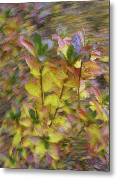 Autumn Azaleas 3 Metal Print