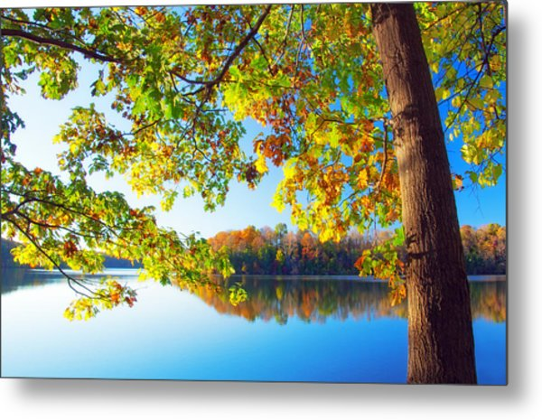 Fall By The Lake Metal Print