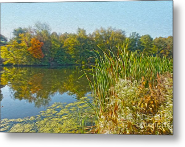 Fall By The River Metal Print by Nur Roy