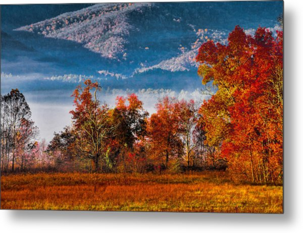 Fall Color Feast Metal Print