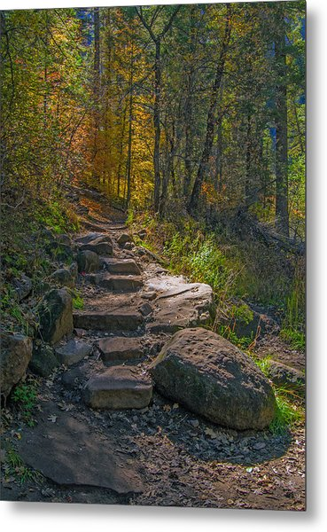 West Fork At Oak Creek Metal Print