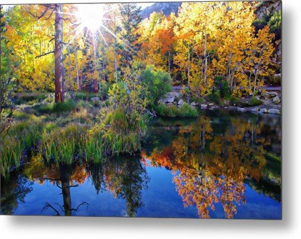 Fall Color Reflection Along Bishop Creek Metal Print