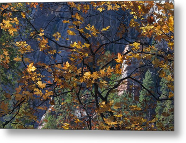West Fork Tapestry Metal Print