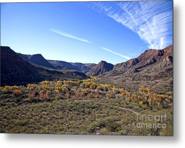 Fall Colors In The Verde Canyon Along The Verde River In Arizona Metal Print