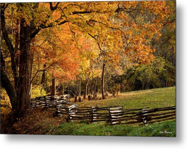 Fall Colors, Asheville, North Carolina Metal Print
