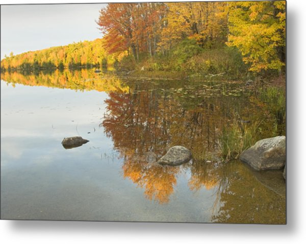 Fall Colors On Taylor Pond Mount Vernon Maine Metal Print