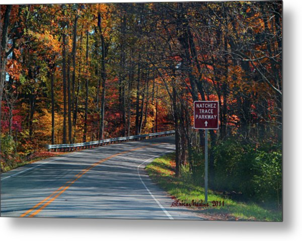 Fall Drive In Tennessee  1 Metal Print