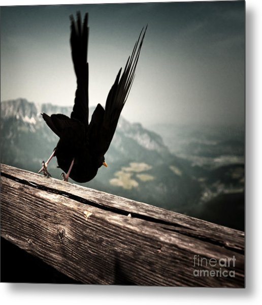 Fall From Eagle's Nest Metal Print