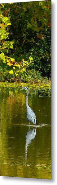 Fall Heron Metal Print