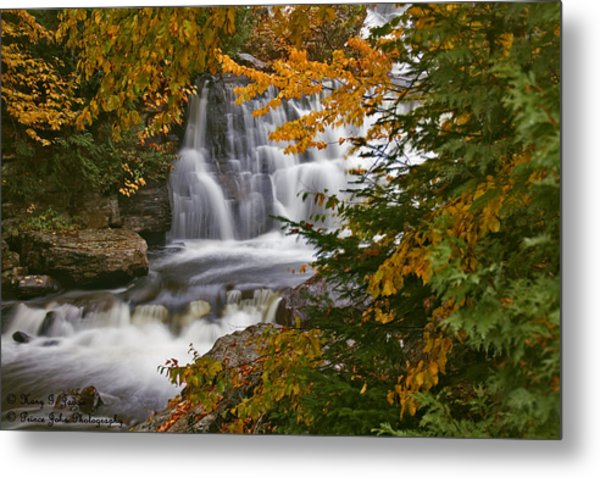 Fall In Fall - Chute Au Rats Metal Print