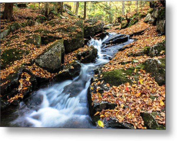 Metal Print featuring the photograph Fall In The Adirondacks by Jessica Tabora