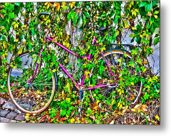 Fall In The City I Metal Print by Kim Lessel