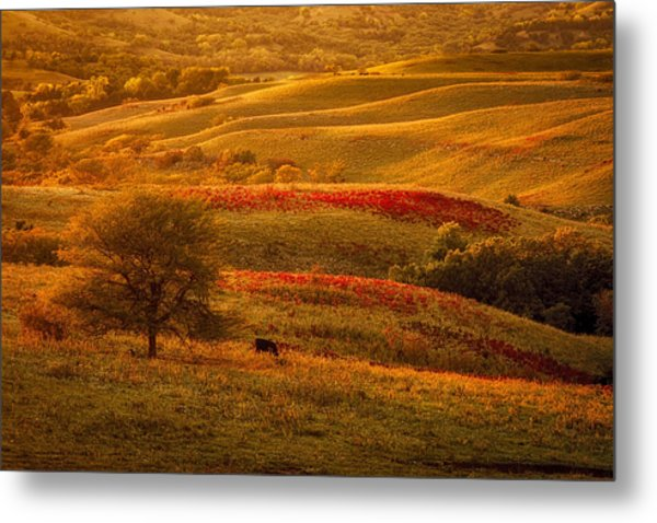 Fall In The Flint Hills Metal Print