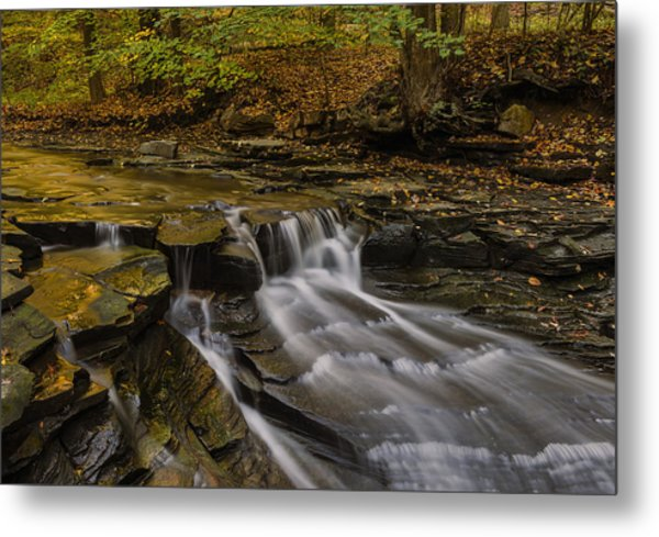 Fall In The Metroparks Metal Print