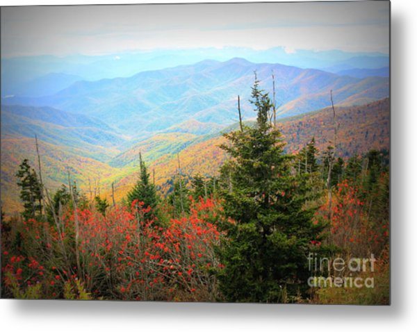 Fall In The Park Metal Print