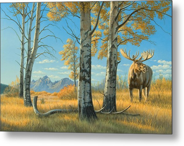 Fall Landscape - Moose Metal Print