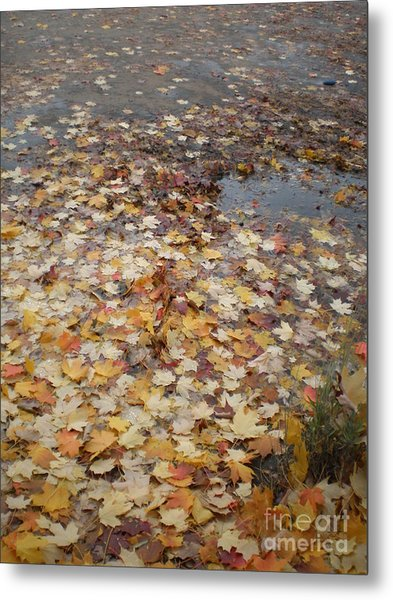 Fall Leaves And Puddle Metal Print