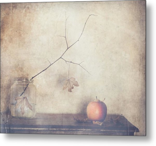 Fall, Leaves, Fall Metal Print