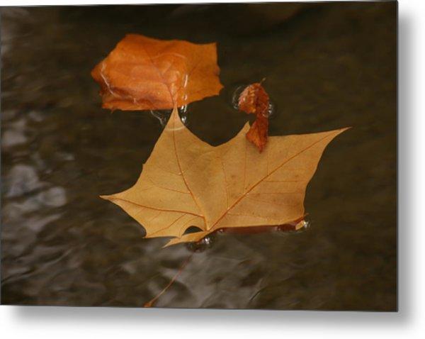 Fall Leaves On Water Metal Print