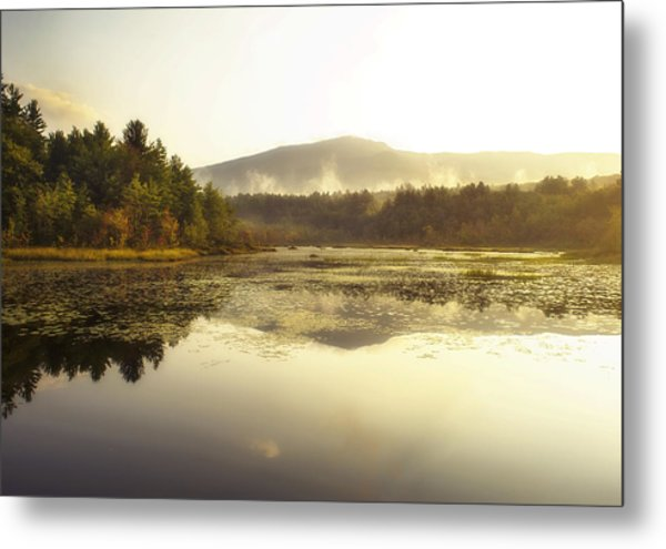 Fall Morning Metal Print