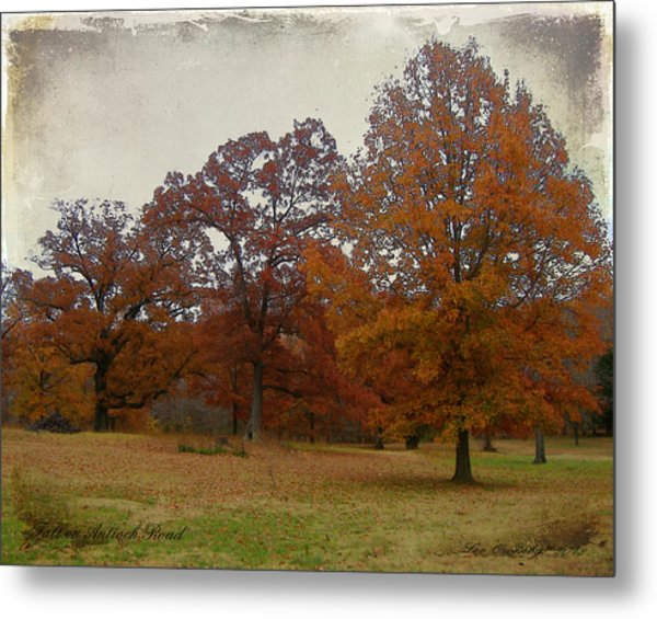 Fall On Antioch Road Metal Print