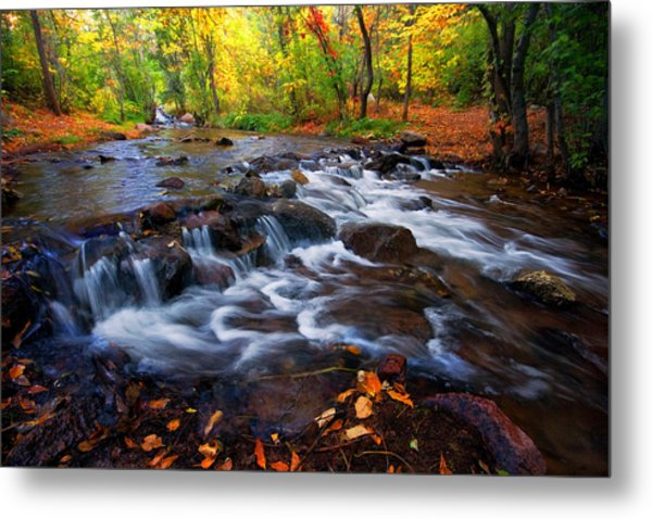 Fall On Fountain Creek Metal Print