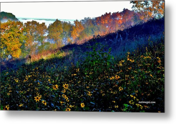 Fall On Garvin Heights Metal Print