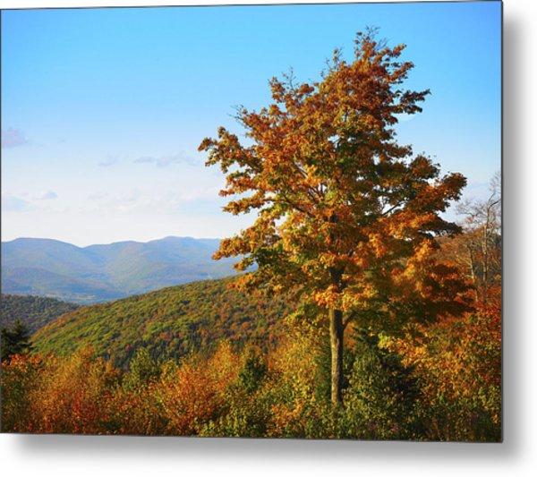 Fall On Mt. Greylock Metal Print