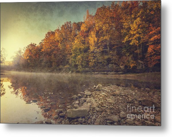 Fall On The Buffalo Metal Print