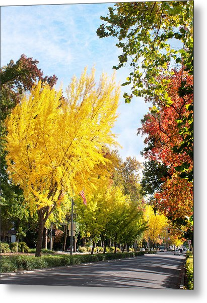 Fall On The Esplanade  Metal Print