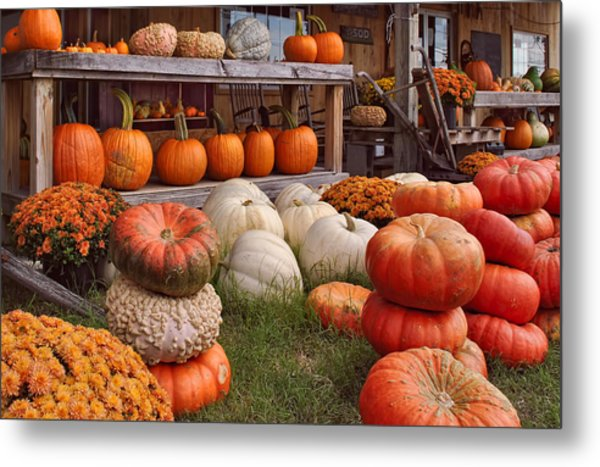 Fall Pumpkins And Gourds Metal Print