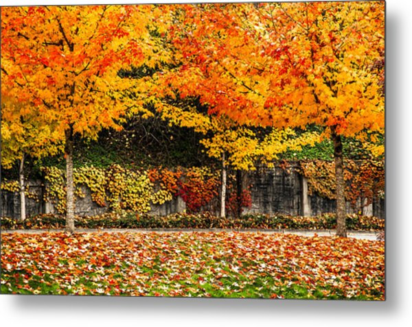 Autumnl Rainbow Metal Print