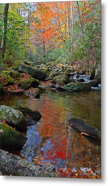 Fall Tranquility On The Middle Saluda River Metal Print by Mary Anne Baker