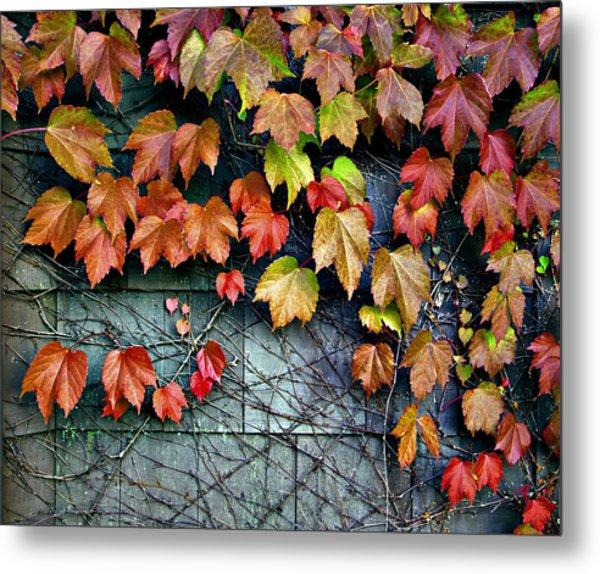 Fall Wall Metal Print