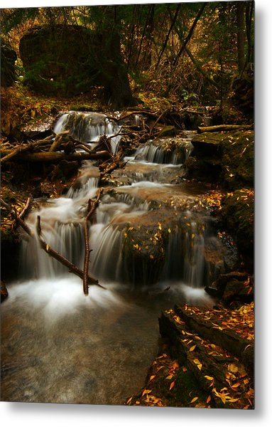 Fall With Grace Metal Print