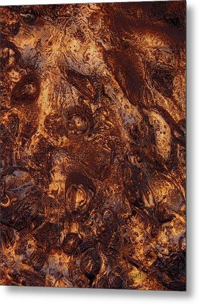 Metal Print featuring the photograph Fallen by Sami Tiainen
