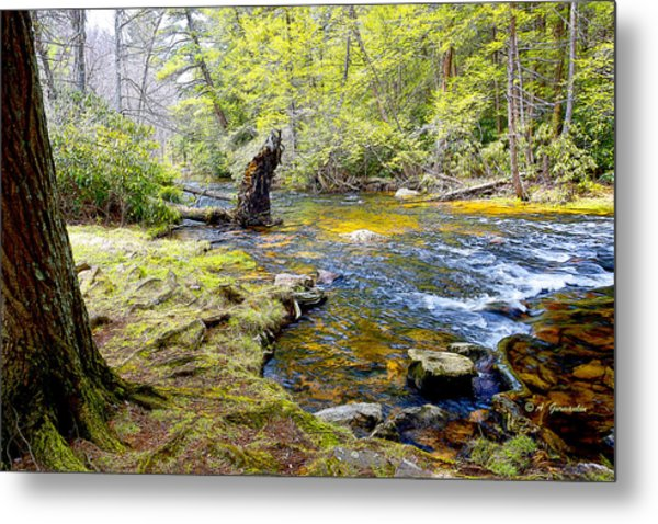 Fallen Tree In Stream Pocono Mountains Metal Print