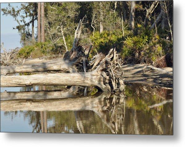Fallen Trees Reflected In A Beach Tidal Pool Metal Print