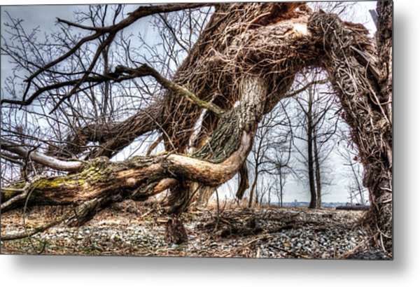 Fallen Twisted Giant Metal Print