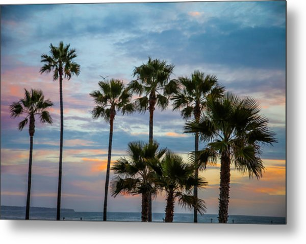 Family Of Palms Metal Print