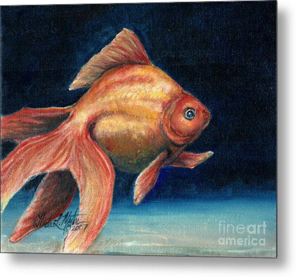 Fancy Goldfish Metal Print by Linda L Martin