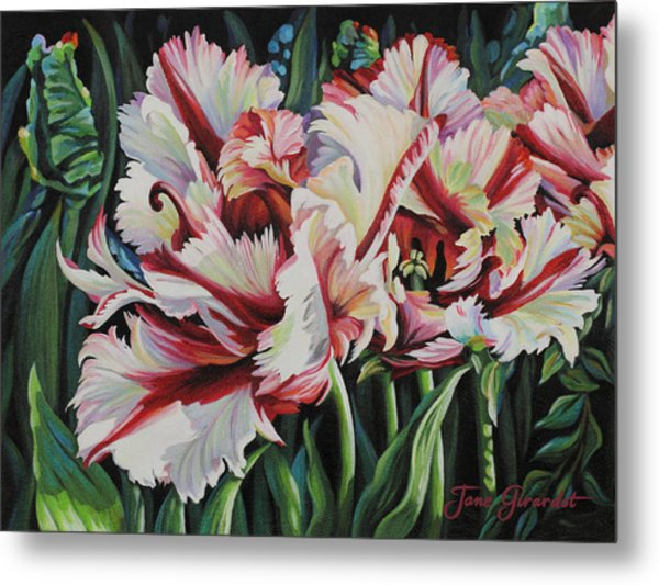 Fancy Parrot Tulips Metal Print